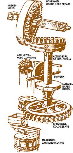 mechanizm wiatraka holenderskiego